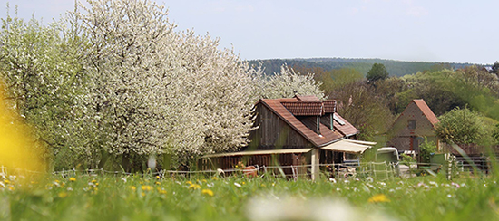 Orenda-Ranch in Burglauer