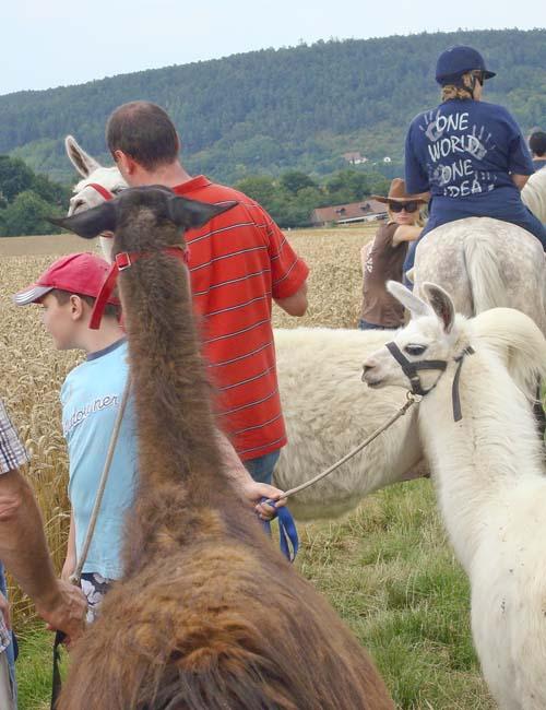 hinterbliebenen  Mit dem Lama auf Tour Familien in Trauer verbrachten einen Tag auf der Orenda Ranch