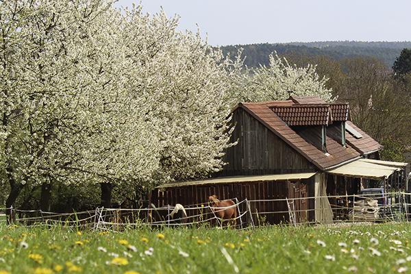 Orenda-Ranch Burglauer, Anfahrt