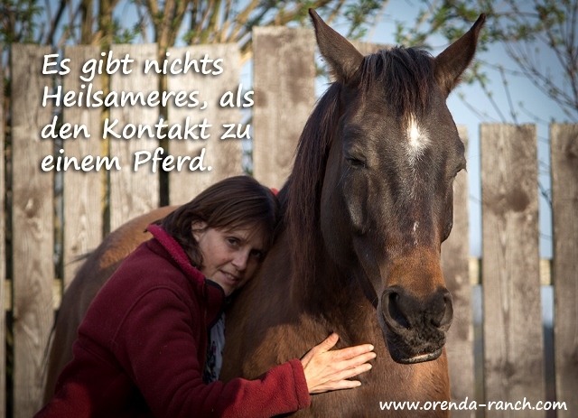 Reittherapie in Bayern