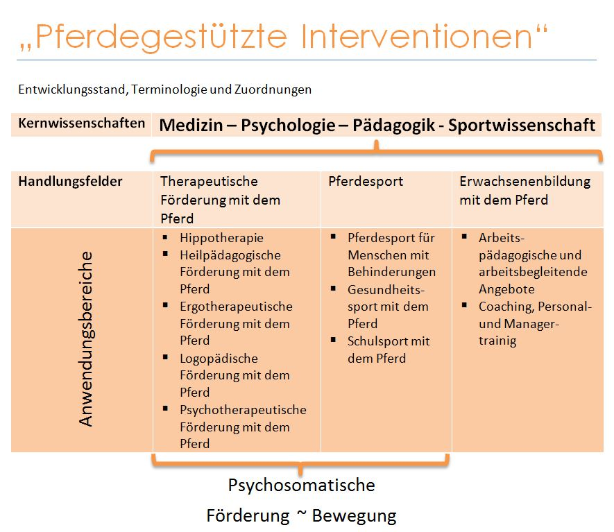 Definition der Reittherapie