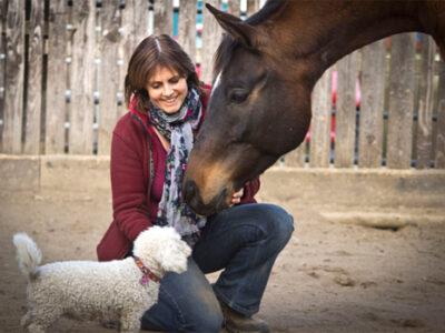 Therapiepferd Lentano und Hund Lizzy