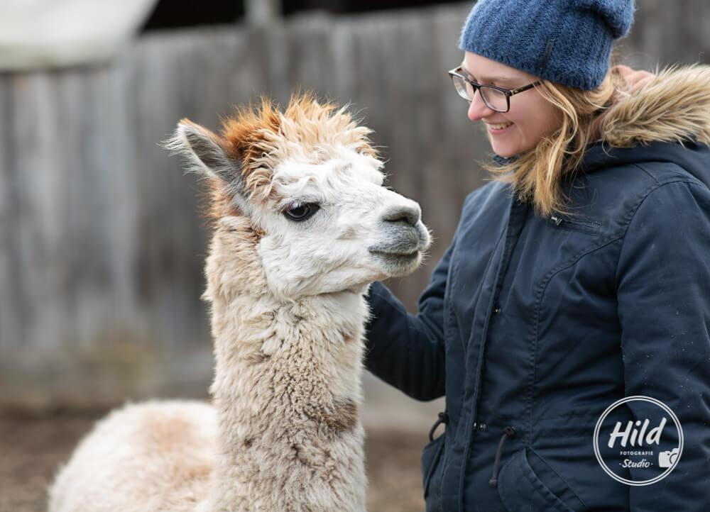 Coaching mit Lamas und Alpakas