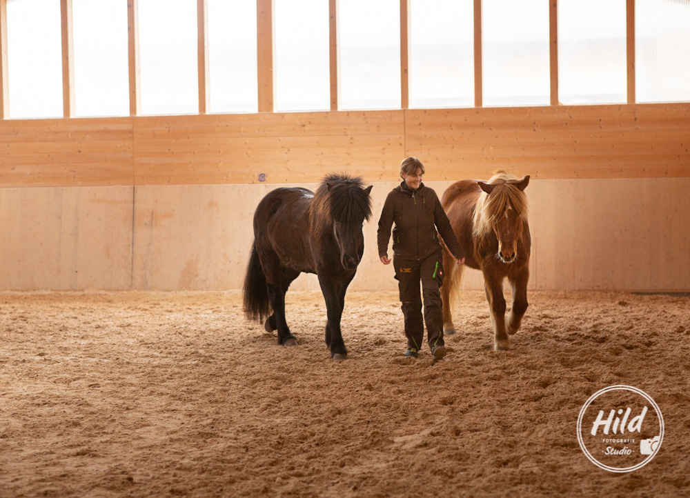 Kontakt mit Pferden