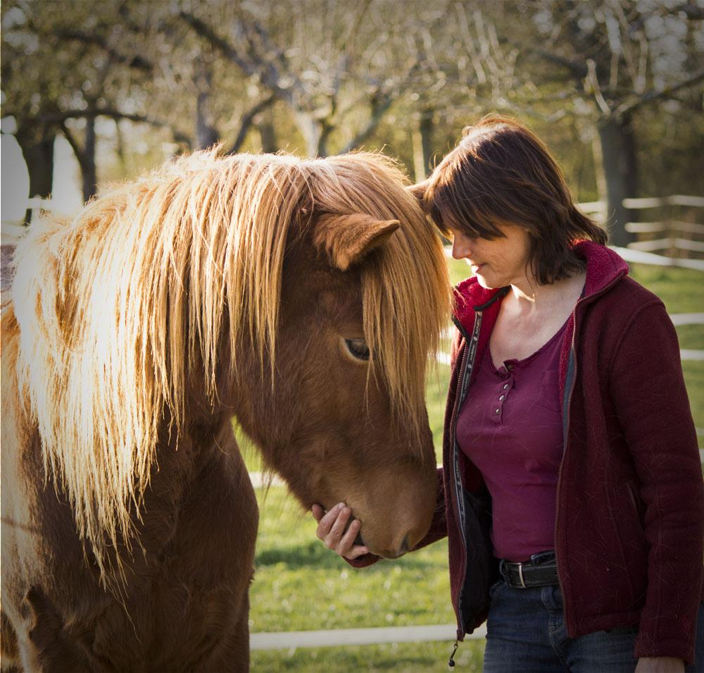 Reittherapie Kontakt Pferd und Mensch