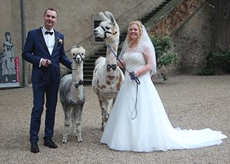 Brautshooting mit Lama und Alpaka