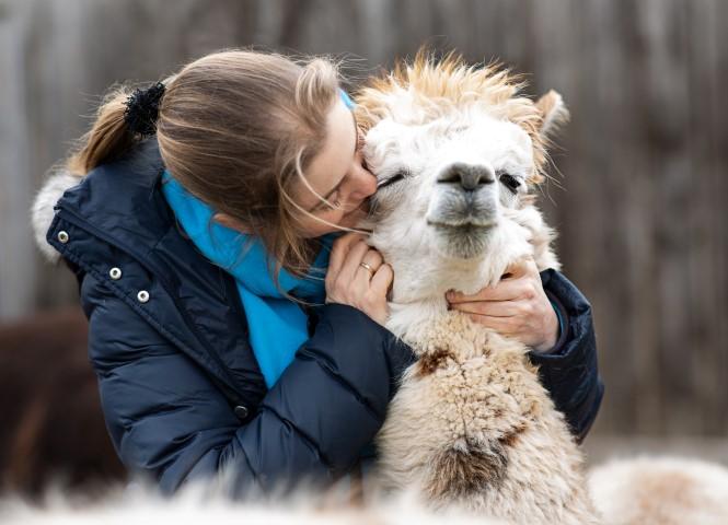 Lama-/Alpakatherapie