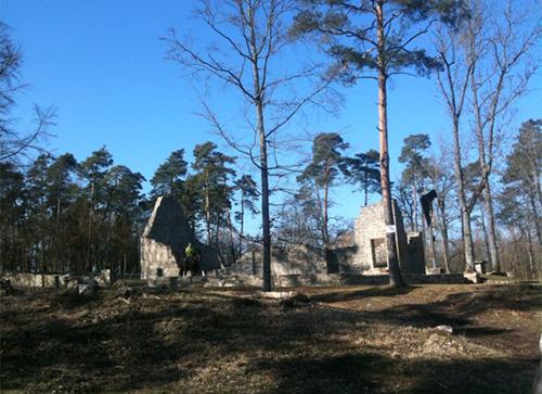 Wanderung mit Lamas / Alpakas zum Michelsberg - Ruine