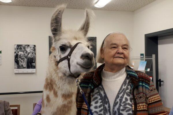 Besuch-Seniorenheim-Lamas