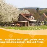 Orenda-Ranch-Postkarte-Vorderseite